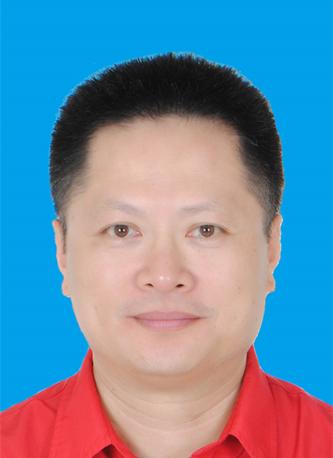 副会长陈峰先生